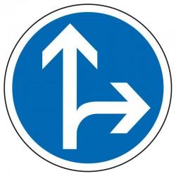Obligation de direction (tout droit ou à droite)