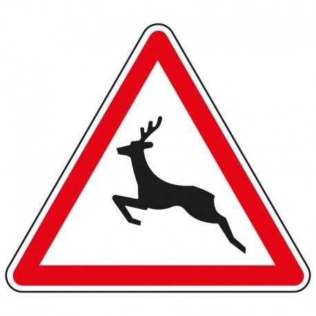 Proximité de passage d'animaux sauvages
