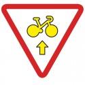 Autorise les vélos à franchir les feux s'ils veulent aller tout droit