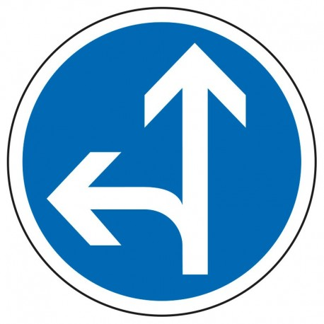 Obligation de direction (tout droit ou à gauche)