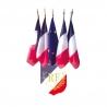 Ecusson tricolore palmes RF et 4 drapeaux France + 1 Europe