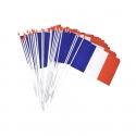 Drapeau France plastique 10x15cm
