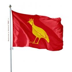 Pavillon Aunis drapeaux regionaux Unic