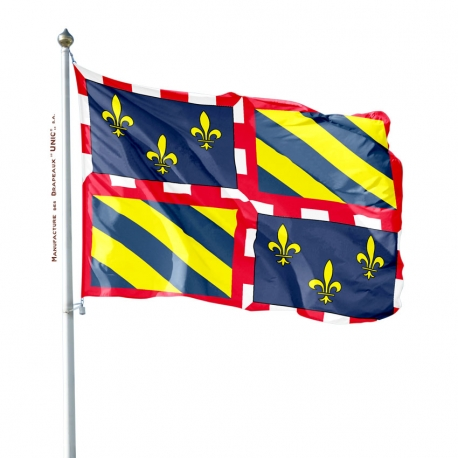 Pavillon Bourgogne drapeau region Unic