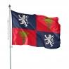 Pavillon Gascogne drapeaux provinces Unic