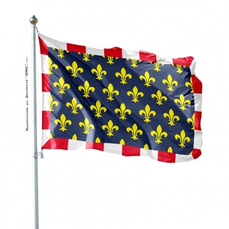 Pavillon Touraine dans drapeaux des provinces françaises Unic