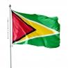 Pavillon Guyana tous les drapeaux Unic