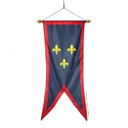 Oriflamme Anjou province française Drapeaux Unic