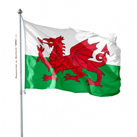 Pavillon Pays de Galles tous les drapeaux Unic