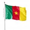 Pavillon Cameroun drapeau du monde Unic