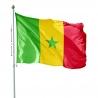 Pavillon Sénégal dans drapeaux des pays d'Afrique Unic