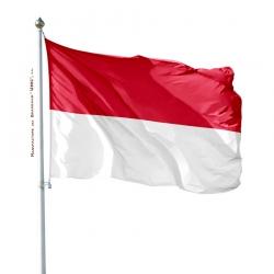 Pavillon Monaco dans drapeaux des pays Unic